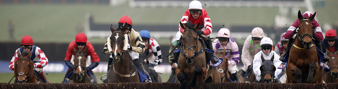 fp cheltenham coneygree uk